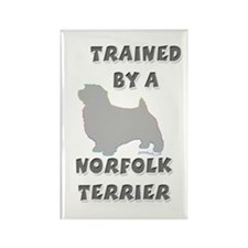 Norfolk Slvr Rectangle Magnet (100 pack)