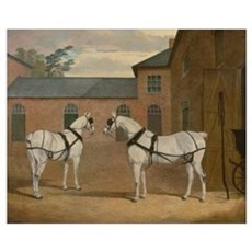 Grey Carriage Horses in The Coachyard - Herring Canvas Art