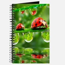 Funny Insects Journal