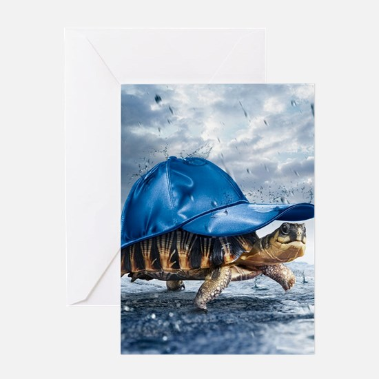 Turtle With Cap Greeting Cards