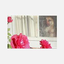 Tara's Rosey Window Rectangle Magnet