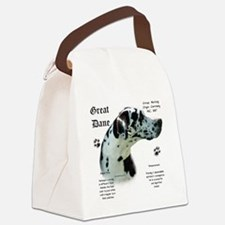 DaneHistoryHarlequinnatural.png Canvas Lunch Bag