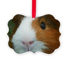 Cavy 1 Ornament