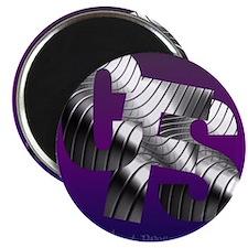 CFS metallic Magnets