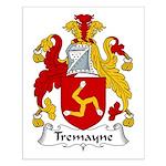 Tremayne Family Crest Small Poster