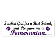 God Gave Me A Pomeranian Bumper Bumper Sticker