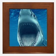 Big White Shark Jaws Framed Tile