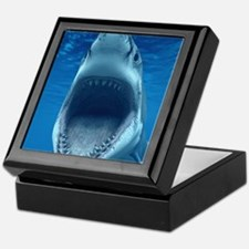 Big White Shark Jaws Keepsake Box