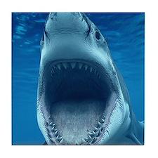 Big White Shark Jaws Tile Coaster