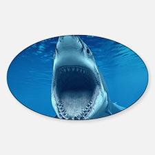 Big White Shark Jaws Decal