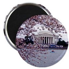 "Cute Washington dc cherry blossom 2.25"" Magnet (10 pack)"