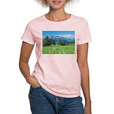 Longs Peak and Field of Flowers T-Shirt