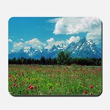 Tetons Meadow Mousepad