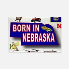 NEBRASKA BORN Magnets