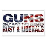 Anti gun control Bumper Stickers