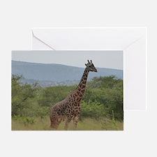 Giraffe of Akagera Greeting Card