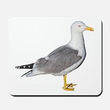 Yellow Legged Gull Mousepad