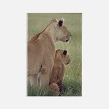 Lions Mother's Day Rectangle Magnet
