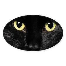 Black Cat Decal