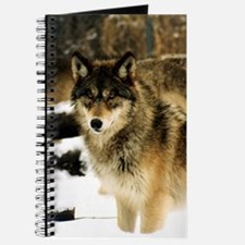Wolves in The Snow Journal