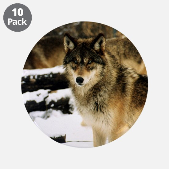 "Wolves in The Snow 3.5"" Button (10 pack)"