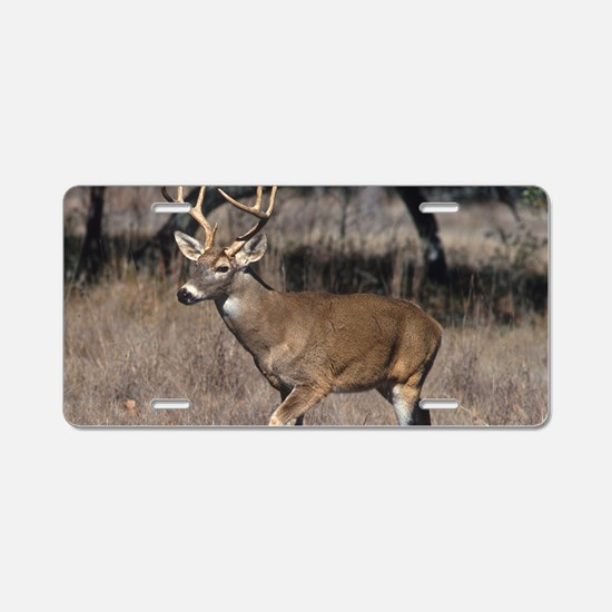 White Tail Deer Aluminum License Plate