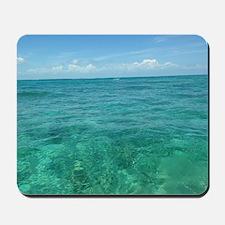 Islamorada reef Mousepad