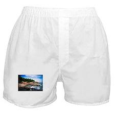Acadia National Park Boxer Shorts