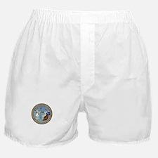 North Carolina State Seal Boxer Shorts