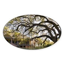 Laura Plantation Decal