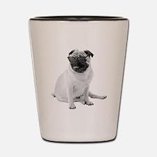 The Shady Pug Shot Glass
