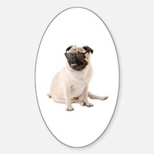 The Shady Pug Decal