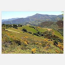 Mountains near O'Cebreiro, El Camino, Spain