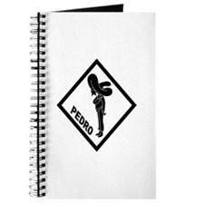 PEDRO Patch (B) Journal
