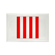 ICS Flag Port Magnets