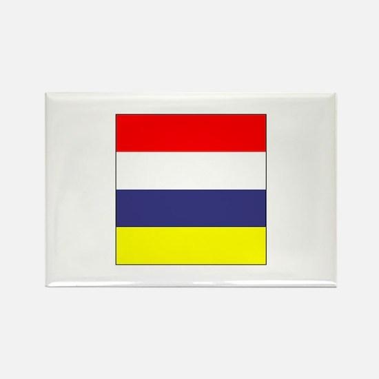 ICS Flag Division Magnets