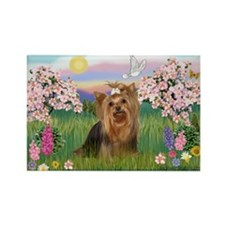 Blossoms/Yorkie #7 Rectangle Magnet