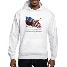 Pride of 1776 Flag/Eagle Hoodie