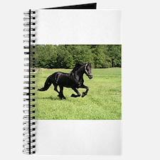 Unique Equine breeds Journal