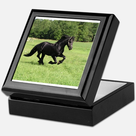 Cute Horse breeds Keepsake Box