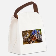 rd5pic Canvas Lunch Bag