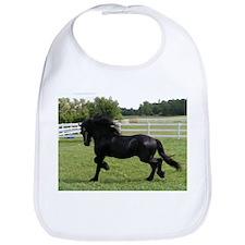Funny Horse fantasy Bib