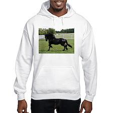 Unique Equine lovers Hoodie