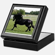 Cute Friesian horse Keepsake Box