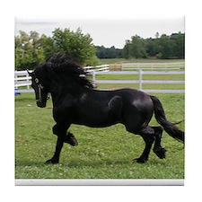 Unique Friesian horse Tile Coaster