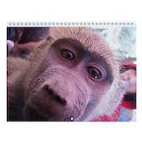Baby monkey Wall Calendars