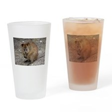 Cute Quokka Drinking Glass