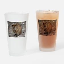 Cute Quokka Drinking Glass