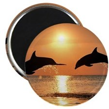 "Cute Dolphin 2.25"" Magnet (10 pack)"