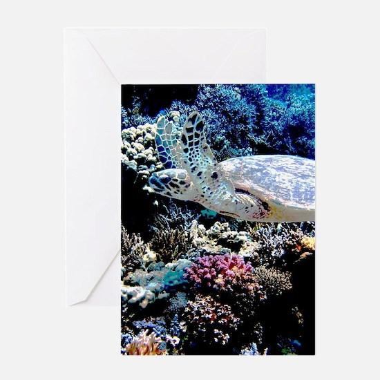 Sea Turtle Greeting Cards